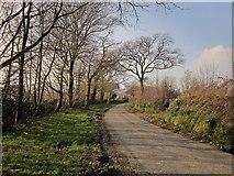 SX2792 : Lane near Clubworthy by Derek Harper