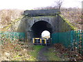 SJ5682 : Mersey Valley Trail railway bridge near Norton by Raymond Knapman