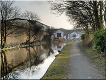 SD8538 : Leeds and Liverpool Canal, Nelson by David Dixon
