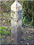 SD8537 : Leeds and Liverpool Canal, Milepost at Whitefield by David Dixon
