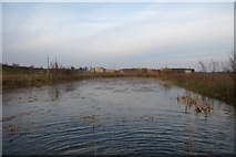 SE6350 : Lake and buildings on Heslington East by DS Pugh