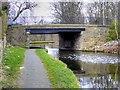 SD8433 : Leeds and Liverpool Canal, Bridge#141H by David Dixon