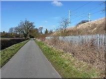 SP2180 : Marsh Lane, Hampton-in-Arden by Richard Law