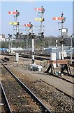 SO8555 : Signals at Worcester Shrub Hill Station by Philip Halling