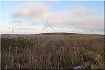 NS5846 : Drumduff Hill by Richard Webb