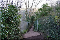 SX9364 : Southwest Coast Path towards Anstey's Cove Road by Ian S