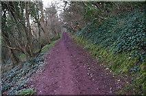 SX9364 : Southwest Coast Path towards Black Head by Ian S