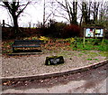 SO5628 : Bench and Millennium Stone in King's Caple by Jaggery