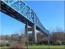 NZ2463 : The Queen Elizabeth II Metro Bridge (3) by Mike Quinn