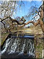 TQ0098 : Weir on the River Chess, Latimer by Bikeboy