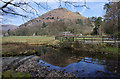 NY3308 : Easedale Beck by Ian Taylor