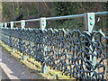NZ2463 : Thornbird Railings, Pipewellgate, NE8 - detail by Mike Quinn