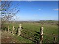 SP6813 : View near Dorton by Des Blenkinsopp