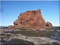 NT6779 : Coastal East Lothian ; Pin Cod, Dunbar by Richard West