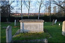 TG1807 : Joseph Scott's Tomb by N Chadwick