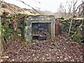 NG3334 : Ruined cottage fireplace by Richard Dorrell