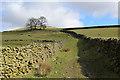 SD6380 : Track ascending towards Fellfoot Lane by Chris Heaton