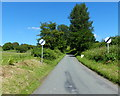 SO7363 : Country lane at Shelsley Beauchamp by Mat Fascione