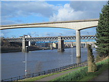 NZ2462 : The River Tyne by the New Redheugh Bridge by Mike Quinn