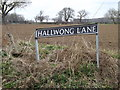 TM2484 : Hallwong Lane sign by Geographer
