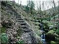 SE0722 : Steps on Elland FP80 in Maple Dean Clough by Humphrey Bolton
