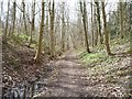 SE4135 : Public footpath to Garforth, Parlington Estate by Christine Johnstone