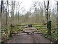 SE4135 : Private track into Parlington Estate's private woodland [2] by Christine Johnstone