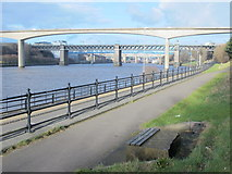 NZ2462 : Path by the River Tyne upstream of the New Redheugh Bridge by Mike Quinn