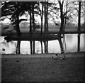 SO9421 : Lake, Cheltenham College Junior School, 1951  by David Hawgood