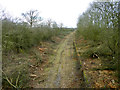 SP7227 : Disused railway by Robin Webster