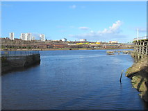 NZ2362 : The confluence of the River Team and the River Tyne by Mike Quinn
