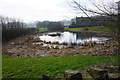 SE0239 : Pond at Lower Laithe Farm by Bill Boaden