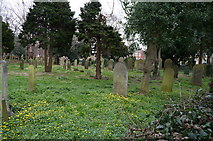 TA0432 : Graveyard at St Mary's Church, Cottingham by Ian S