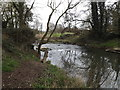 TM2482 : River Waveney by Adrian Cable