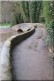 SS9843 : Gallox packhorse bridge by Philip Jeffrey