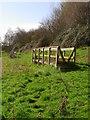 SO9745 : Footbridges over damp areas, Wick by Liz Stone