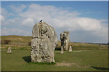 SU1070 : Standing stones by Trevor Harris