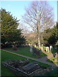 TQ3632 : St Margaret, West Hoathly: churchyard (VII) by Basher Eyre