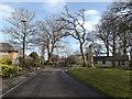 TG1909 : Larkman Lane, Bowthorpe, by Adrian Cable