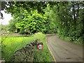 SK1285 : Marys Lane, Edale by Derek Harper