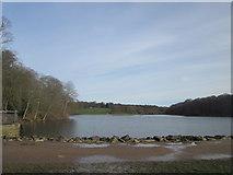 SE3337 : Waterloo Lake, Roundhay Park by John Slater