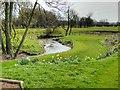 SJ8981 : River Dean, Avro Golf Course by David Dixon