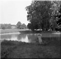 SO9537 : The Brake swimming pool, Overbury 1952 by David Hawgood
