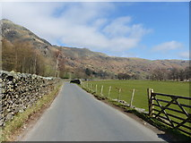 NY2906 : Great Langdale by Anthony Foster