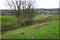 SE0340 : Field drainage near Holme House by Bill Boaden