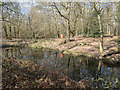 TQ2898 : Camlet Moat, Trent Park, Cockfosters, Hertfordshire by Christine Matthews