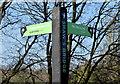 J3269 : Fingerpost sign, Shaw's Bridge, Belfast (April 2015) by Albert Bridge