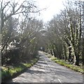 SW8764 : Road near Carnanton House by Anthony Parkes