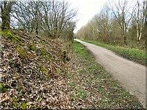 SJ9694 : Former Godley Junction to Apethorn railway line by Gerald England