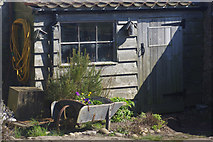 NU1341 : Shed in Lindisfarne Castle Garden by Stephen McKay